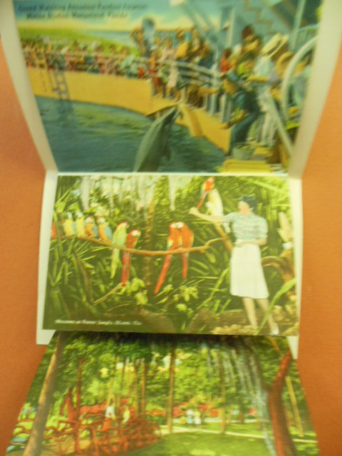 Image for Charm Spots of Florida Postcard Mailer