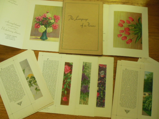 Image for The Language of Flowers; Thirty Floral Prints and the Story of Each Flower 1937