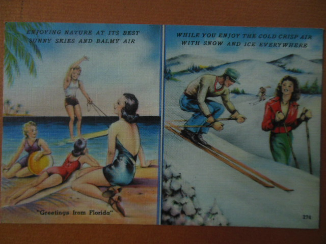 Image for Greetings From Florida Postcard Beach and Snow Tichnor (274)
