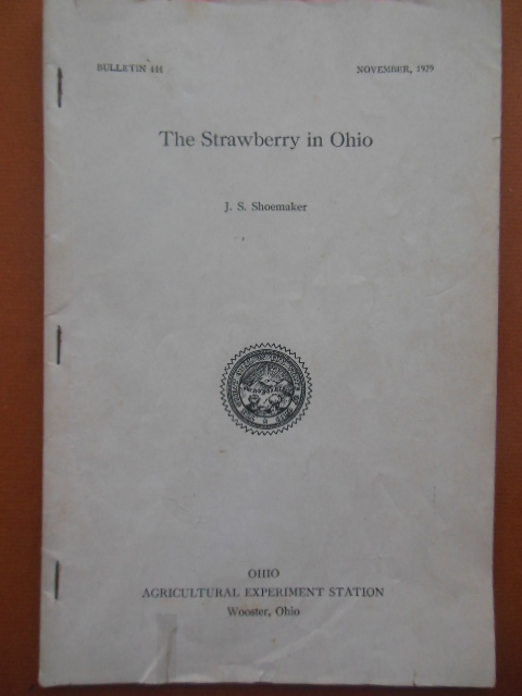 Image for The Strawberry In Ohio Bulletin 444