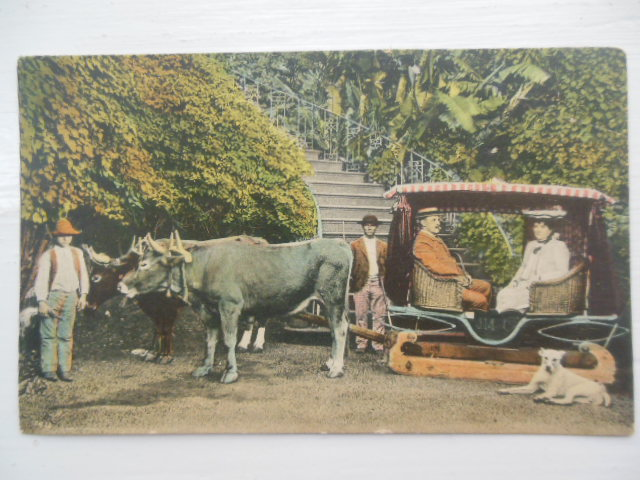 Image for Postcard Portuguese Couple in Unusual Cart
