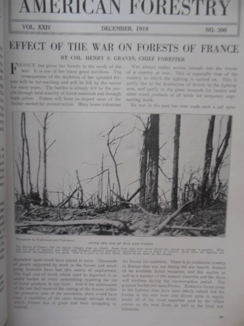 Image for American Forestry Magazine December, 1918 (WWI Emphasis)