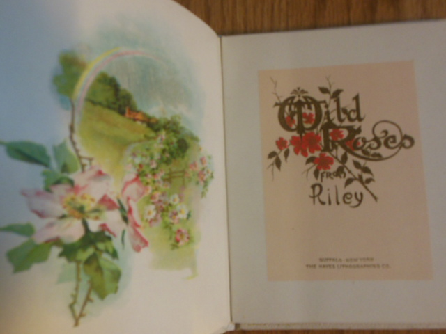 Image for Wild Roses From Riley (Gift Book 1910)