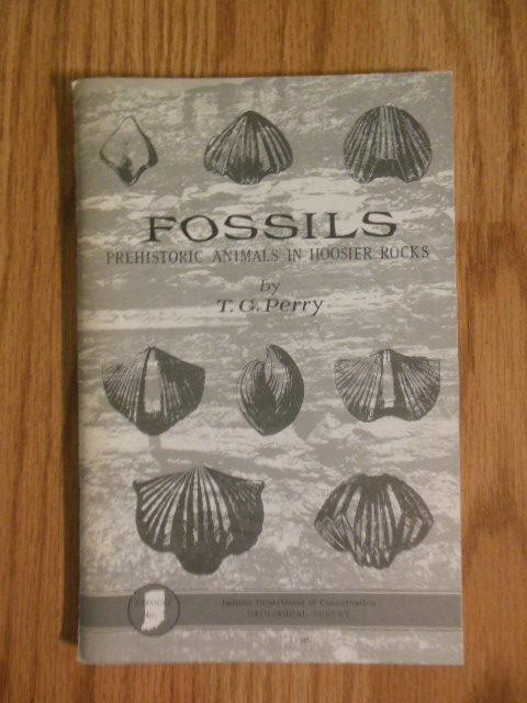 Image for Fossils; Prehistoric Animals in Hoosier Rocks 1959