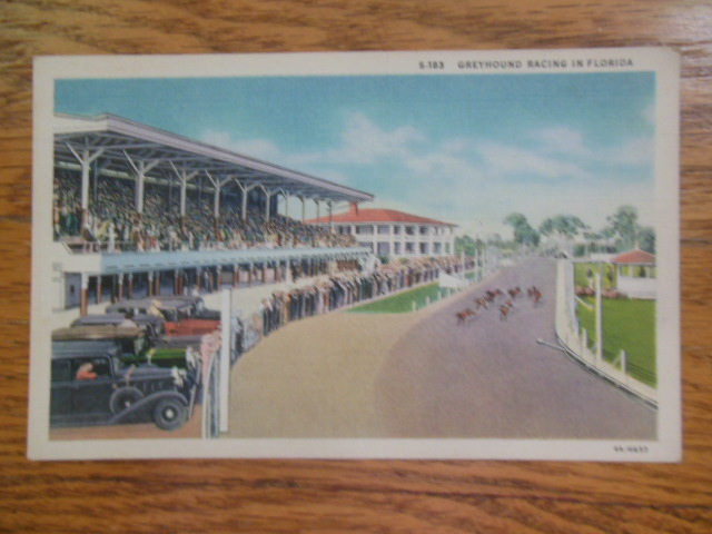 Image for Linen Postcard Greyhound Racing in Florida