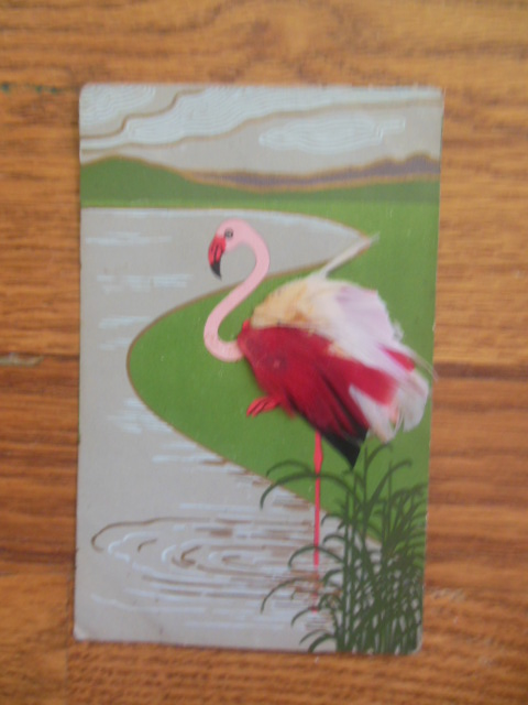 Image for Postcard Flamingo With Actual Feathers (early 20th century)