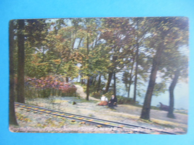 Image for Postcard Along the Miniature Railroad Between Silver Lake and Chautauqua Parks (Early 1900's)