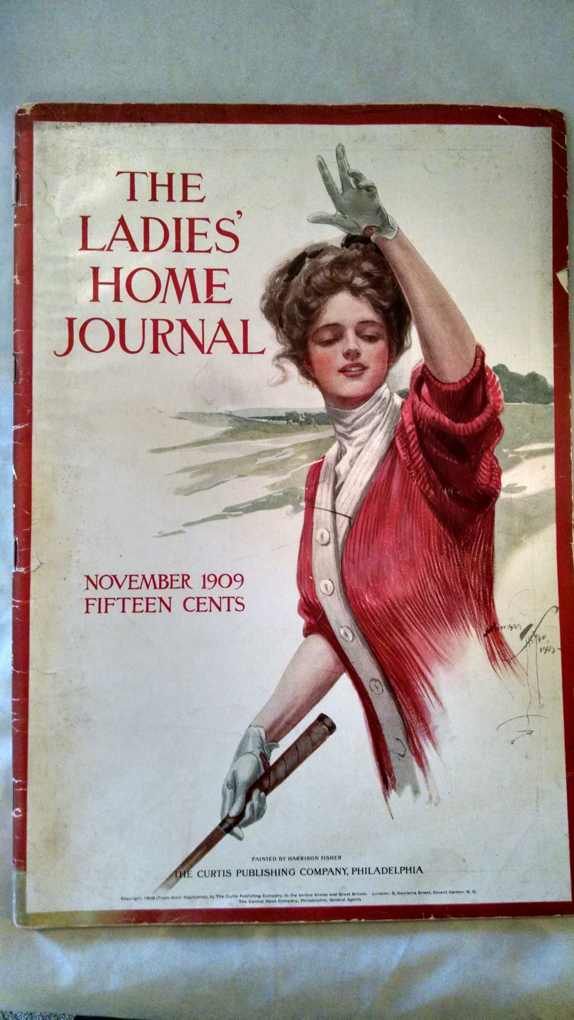 Image for THE LADIES HOME JOURNAL  NOVEMBER 1909