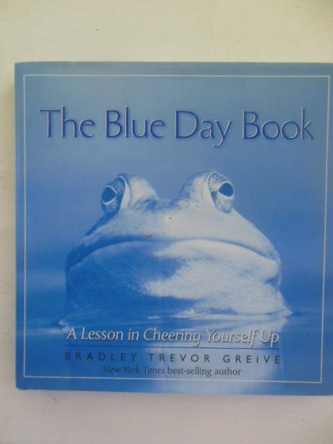 Image for The Blue Day Book: A Lesson In Cheering Yourself Up (20000)