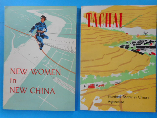 Image for New Women In China