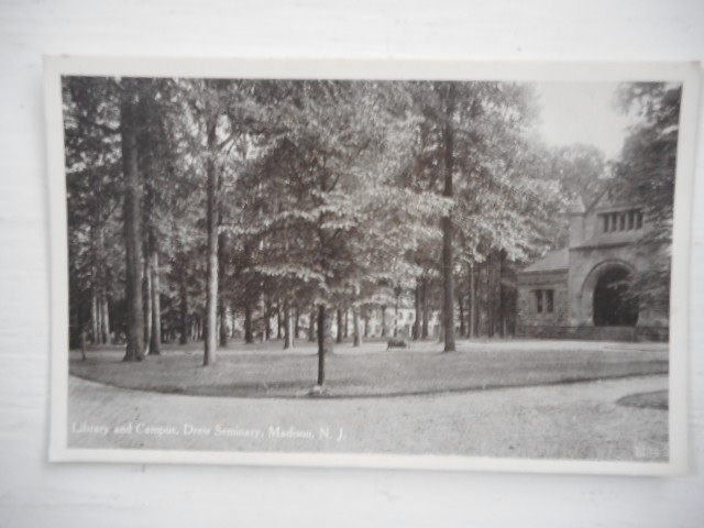 Image for Library and Campus and Mead Hall, Drew Seminary, Madison, New Jersey;