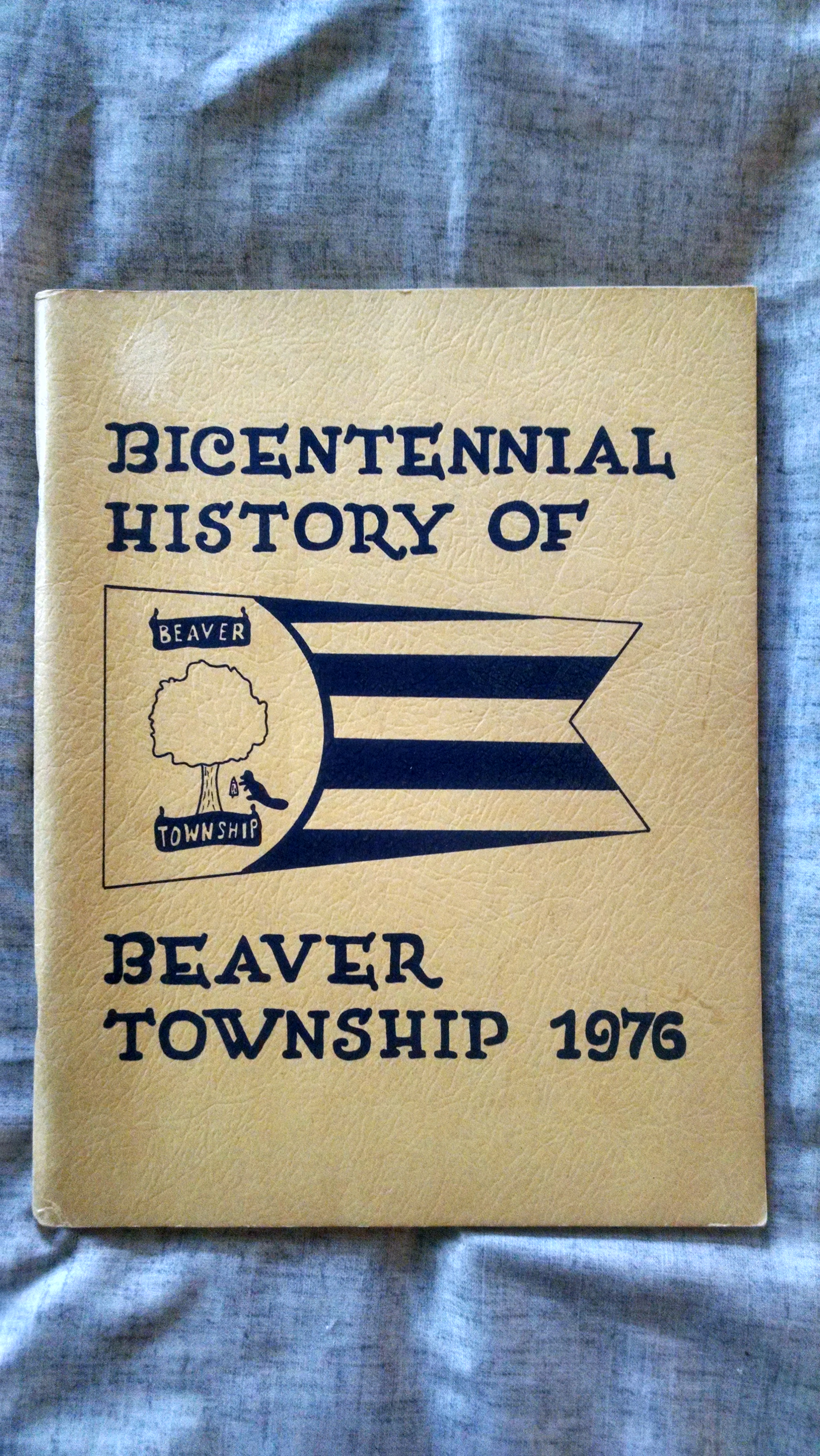 Image for BICENTENNIAL HISTORY OF BEAVER TOWNSHIP 1976