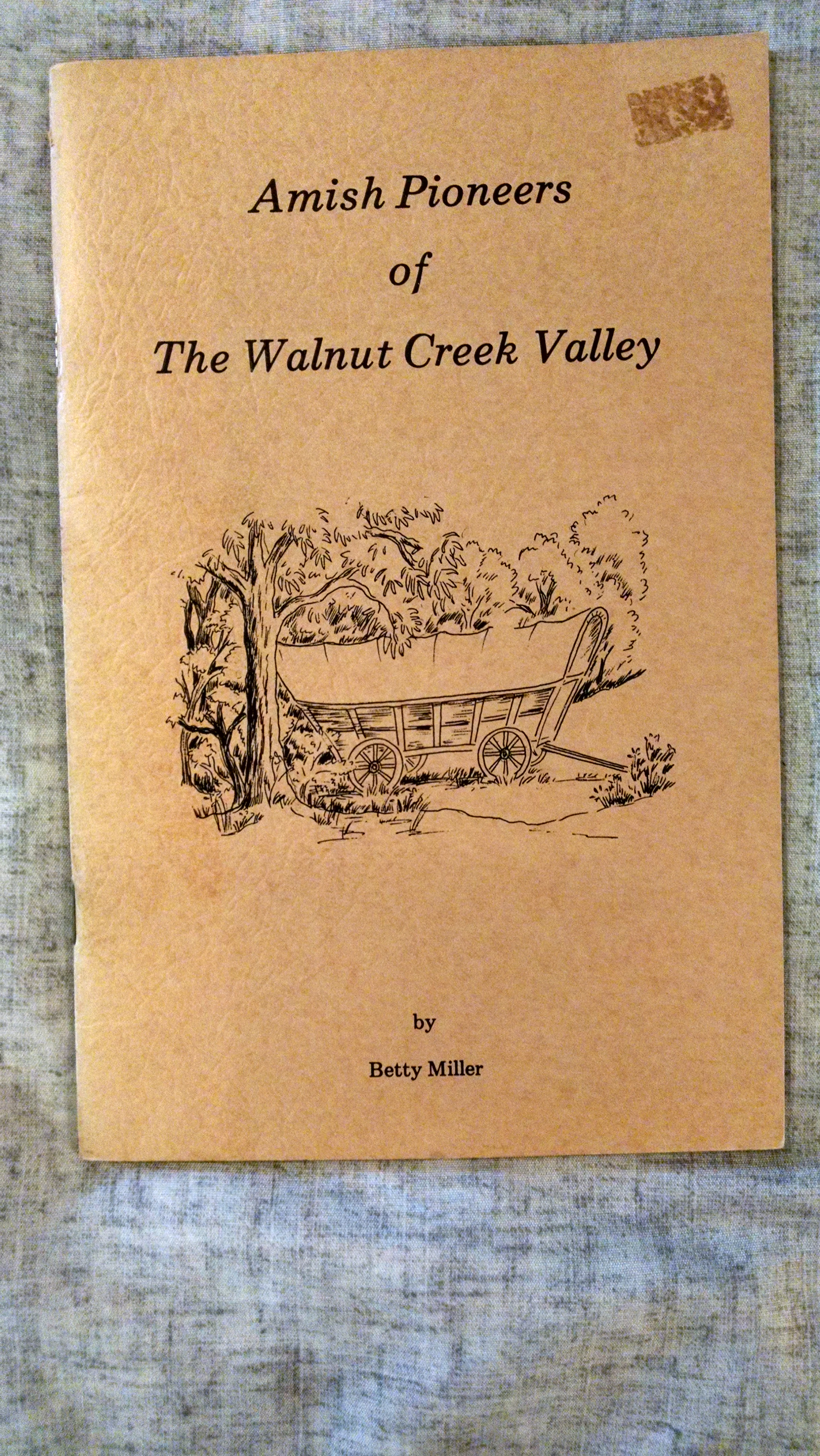 Image for AMISH PIONEERS OF WALNUT CREEK VALLEY