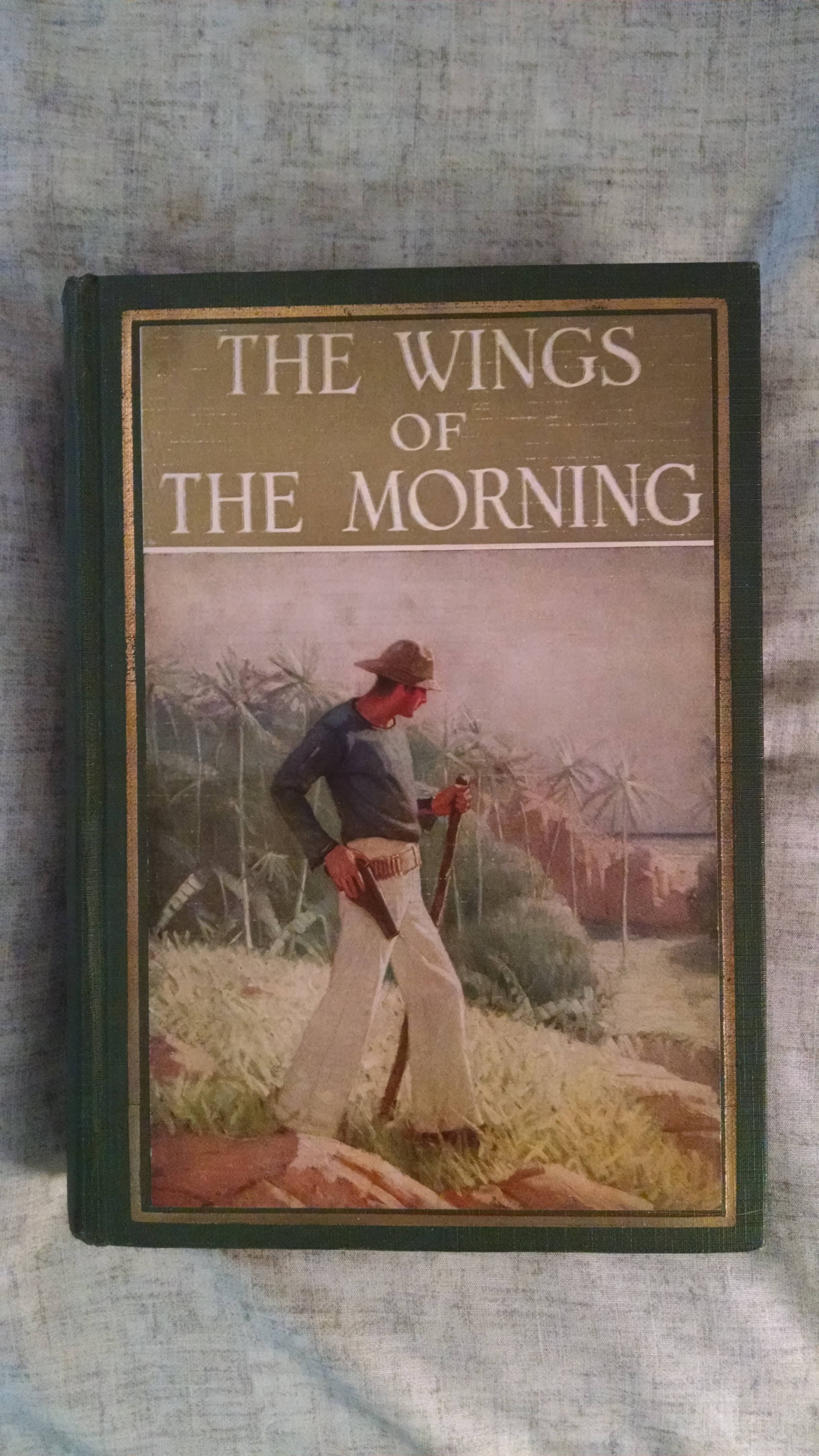 Image for THE WINGS OF MORNING