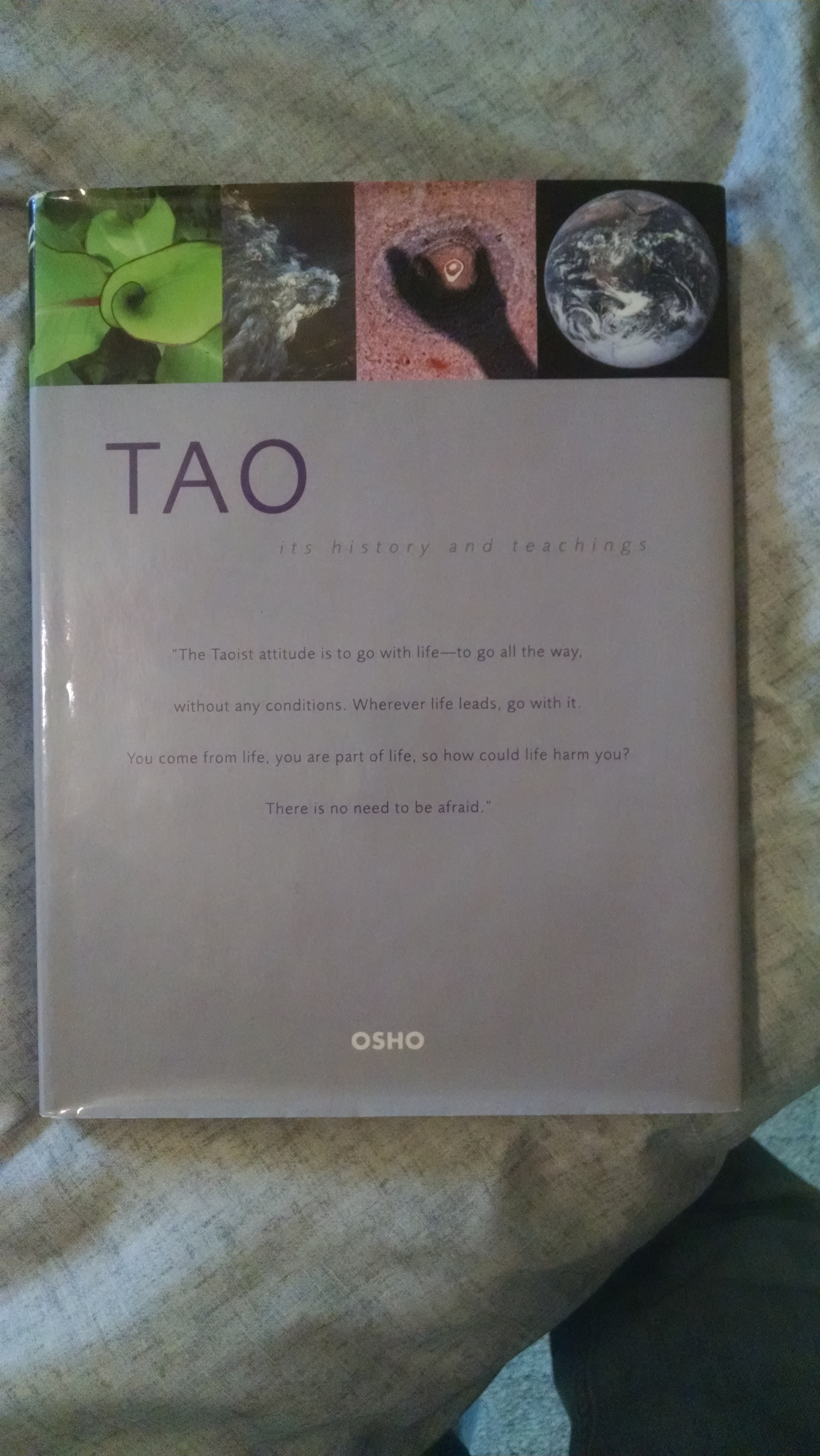 Image for TAO    ITS HISTORY AND TEACHING