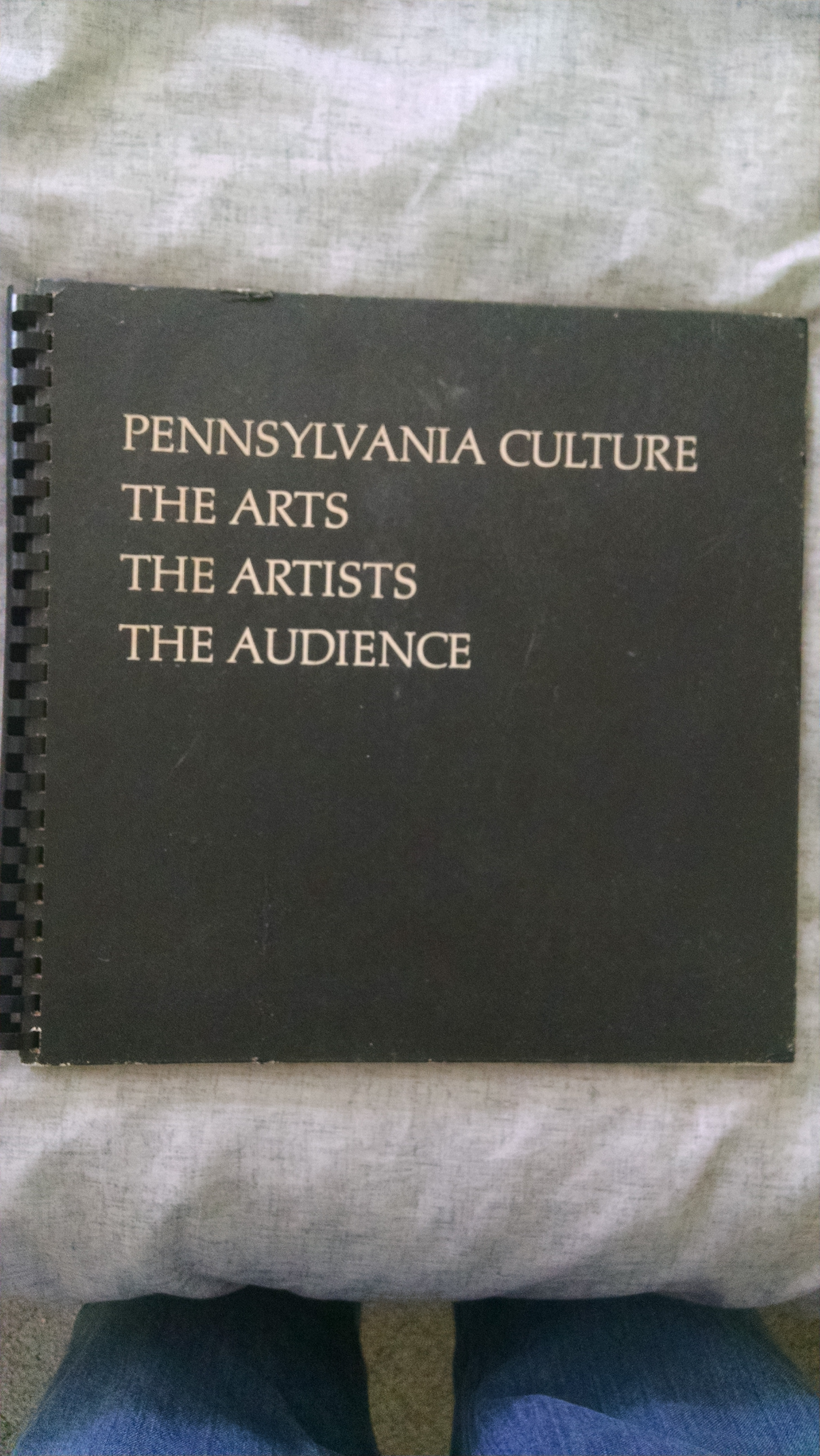 Image for PENNSYLVANIA CULTURE THE ARTS  THE ARTISTS THE AUDIENCE